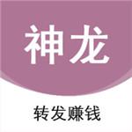 神龙资讯app安卓版